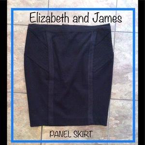 Elizabeth and James Panel Mini Skirt